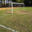 Stock Photo: Soccer Goal and Field