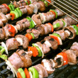 Shish Kebabs on the Grill — Stock Photo #8804055