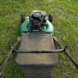 Pushing Lawn Mower — Stock Photo #8805568