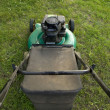 Pushing a Lawn Mower - Foto Stock