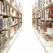 Isolated Library Shelves - Stock Photo