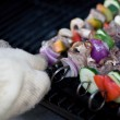 Shish Kebabs on the Grill — Stock Photo #8805751