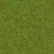 Seamless Green Grass — Stock Photo