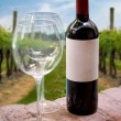 Vineyard Wine Bottle — Stock Photo