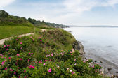 Newport Rhode Island Shoreline — Stock Photo