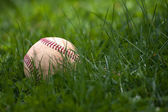 Baseball in the Grass — Stock Photo