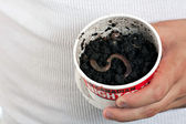 Night Crawler Earth Worms — Stock Photo