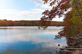 новой англии осенней листвой — Стоковое фото