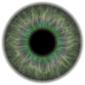 Green Eye Iris — Stock Photo