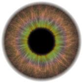 Brown Iris — Stock Photo