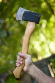 Hatchet — Stock Photo
