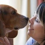 Pet Lover — Stock Photo #8944267