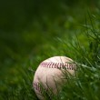 Old Baseball in the Grass — Stock Photo