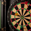 Professional Dart Board - Stockfoto