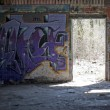 Stock Photo: Graffiti Covered Slums