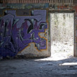 Graffiti Covered Slums — Stock Photo #8946504
