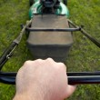 Pushing Lawn Mower — Stock Photo #8947715