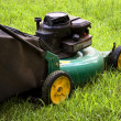 Lawn Mower — Stock Photo #8947716