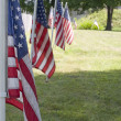 Row of Flags - Stock Photo