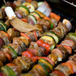 Shish Kebabs on the Grill — Stock Photo