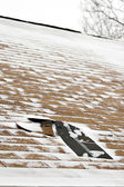 Winter Damaged Roof Shingles — Stock Photo