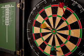 Professional Dart Board — Stock Photo
