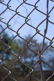 Chain Link Fence — Stockfoto