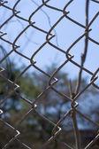 Zincir bağlantı çit — Stok fotoğraf