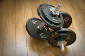 Free Weight Dumbells — Stock Photo