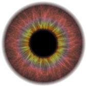 Eye Iris — Stock Photo