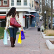 Woman Out Shopping — Stock Photo #9240004