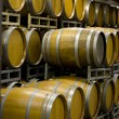 Stock Photo: Winery Cellar Barrels