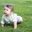 Stock Photo: Baby Boy Crawling