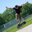 Stock Photo: Skateboarder Doing Tricks On His Board