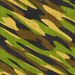 Stock Photo: Miltary camo