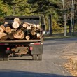 Logging Truck - Stock Photo