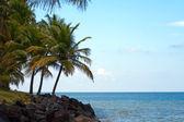 Luquillo Beach in Puerto Rico — Stock Photo