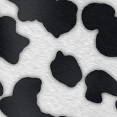 Dairy Cow Print — Stock Photo