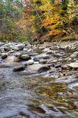 Podzimní listí řeky — Stock fotografie