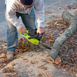 Cleaning Up Storm Damage with a Chainsaw — Stock Photo #9257557