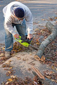 Cleaning Up Storm Damage with a Chainsaw — Stock Photo