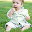 Stock Photo: Baby Eating Grass
