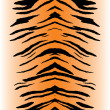Stock Vector: Tiger Stripes Vector