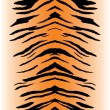 Tiger Stripes Vector - Stock Vector