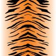 Tiger Stripes Vector — Stock Vector