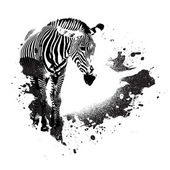 Grunge zebra — Stockvektor