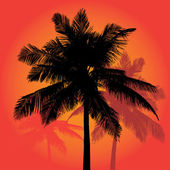 Palm tree silhouettes sunset vector trio — Vecteur