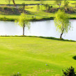 Golf course — Stock Photo #8075928