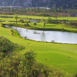 Golf courses and lakes — Stock Photo