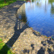 Pond in the park - Stock Photo